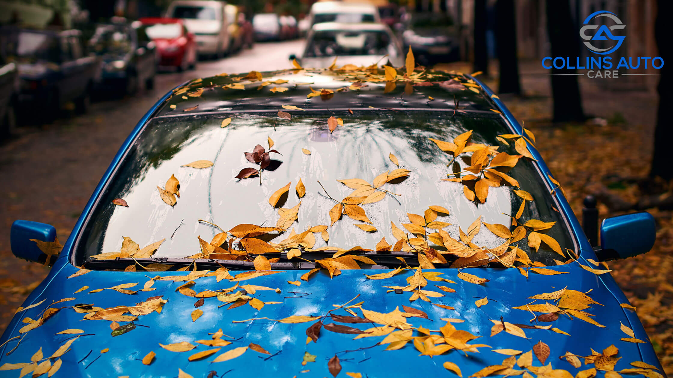 3 Things That Should Work In Your Car During The Fall
